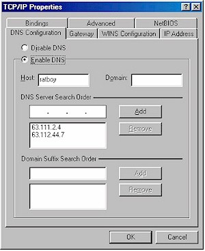 Figure 2: Win98SE DNS properties