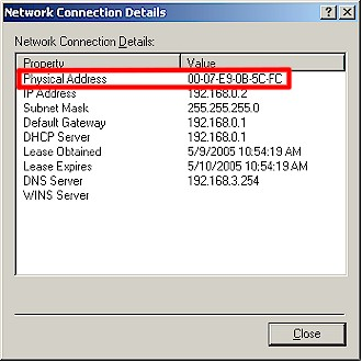 MAC address in Network Connection Details